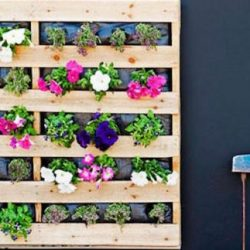 What Patio Improvements You Should Make For Spring