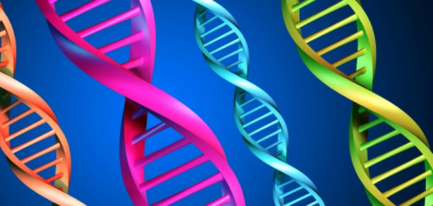 Genetics and Addiction: How Genetics Factor Play a Role in Addiction