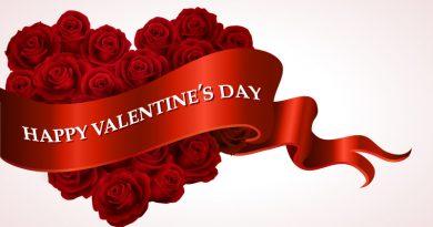 Happy Valentine's Day Guide