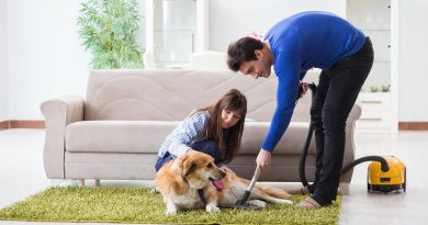 How to Keep a Super Clean Home, Even Though You Have Pets