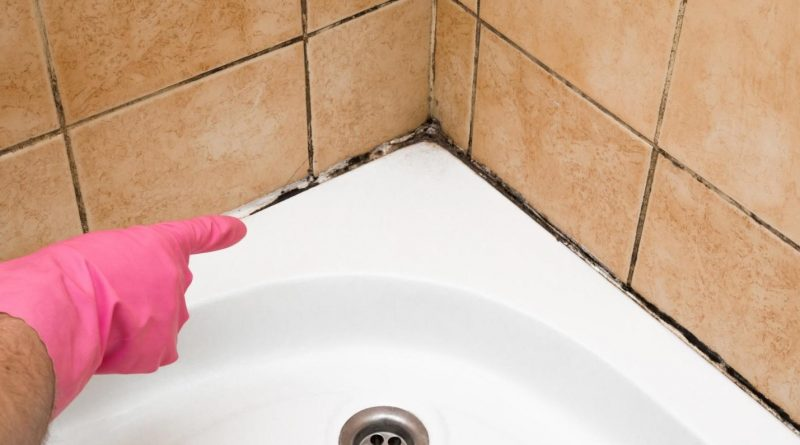 Remove, Refresh, And Redo: Easy Bathroom Mold Removal In 8 Practical Steps - Night Helper