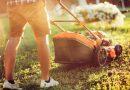 9 Tools to Make Gardening Easier in 2019