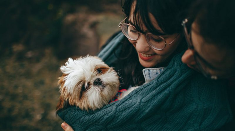 AMAZING TIPS FOR PET OWNERS