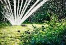 Best Sprinklers for Your Lawn and Garden