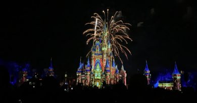 Our Magical Disney World Trip Right Before The Pandemic Hit    #AD  @WaltDisneyWorld