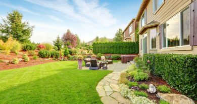 Landscape Ideas without Grass for your Yard