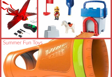 Kick Off Your Summer Fun with PLAYMOBIL, HOG WILD, AND ZING Toys!