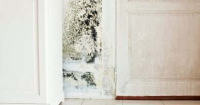 How To Minimize Mold In The Bathroom
